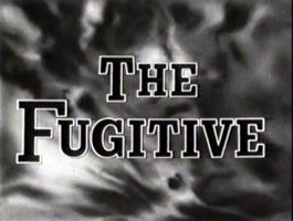 The Fugitive – The series